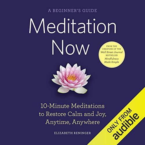 Meditation Now: A Beginner's Guide cover art