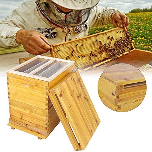 Nannday Honey Keeper Beehive, 10 Rahmen Bienenhaus, Zedernholz Bienenzucht Tool Kit, bringt mehr bestäubende Bienen in Ihren Garten
