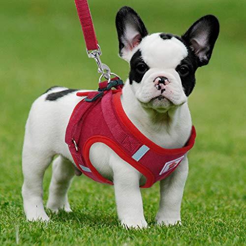 Warmiehomy -   Hundegeschirr Hunde
