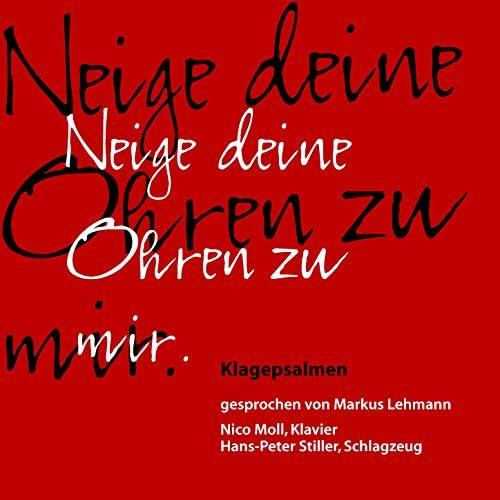 Nico Moll, Hans-Peter Stiller & Markus Lehmann
