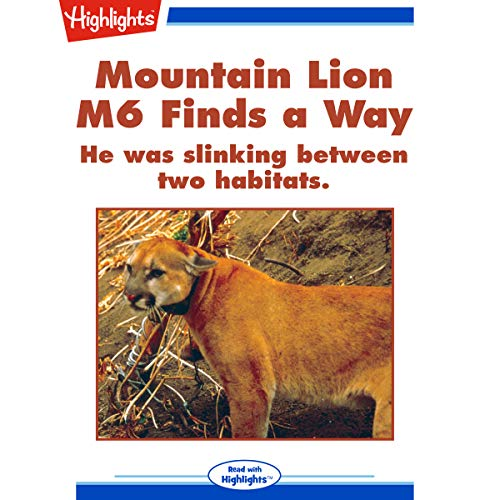 Mountain Lion M6 Finds a Way copertina
