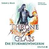 Die Sturmbezwingerin: Throne of Glass 5 - Sarah J. Maas