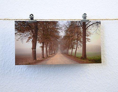 Postkarte XXL Panorama Allee Herbst Nebel