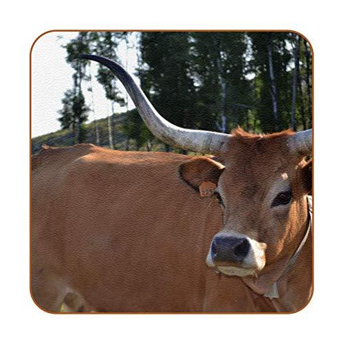 Bennigiry Animales Vaca Marrón Ganado Posavasos de Cuero Taza de café Cuadrada Taza de Vidrio Manteles Individuales Tapetes para Tazas Manteles Individuales 6 PCS