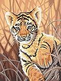 Handaxian Abstracto Pintura al óleo Moderna Lienzo Pintura Arte Pared Mural,pósters decoración Foto,el Gimnasio o la Sala de Entrenamiento-Pequeño Tigre Animal(50x75cm) Sin Marco