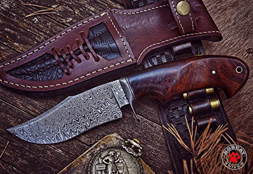 Bobcat Knives - 10-inch Overall, Black Fish, Hunting Bowie Knife - Full Tang Fixed Blade Damascus Steel - Walnut Wood Handle with Leather Sheath