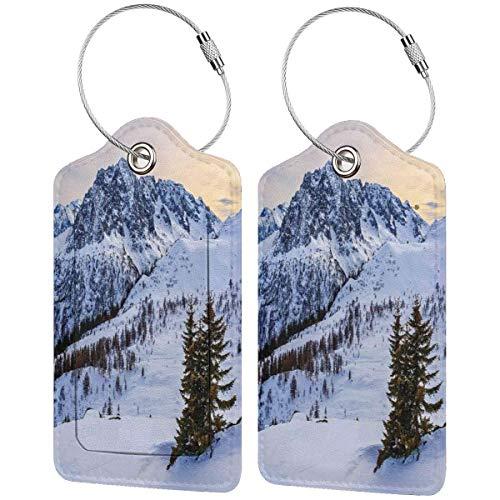 WINCAN Etiquetas para Equipaje,Naturaleza Nevado Montaña Invierno Imprimir,2 Piezas Etiquetas de Equipaje de Viaje Etiquetas de Identificación de la Maleta para Maletas,Mochila