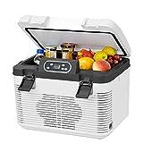 ZJHDX Mini portátil de 19L, termostato frío y caliente, caja de almacenamiento para refrigerador, dormitorio doble, hogar multifunción, refrigerador de autos de gran capacidad