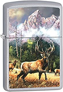 Best painting a zippo Reviews