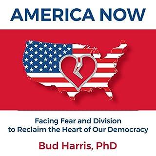 America Now audiobook cover art