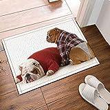 Decoración animal ropa shar pei perro lindo Alfombra de baño puerta antideslizante puerta de entrada del piso exterior interior puerta delantera alfombra de niños alfombra de baño 50x80cm accesorios