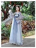 YUNGYE Hanfu - Disfraz de hada femenina, estilo chino, elegante, de estilo antiguo, para verano, para uso diario (color: estilo B, tamaño: S)