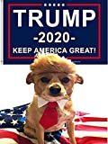 5 in 1 Trump Style Pet Costume Dog Wig Sets - Donald Dog Clothes with Collar and Tie Head Wear + 2020 Trump Flag Keep America Great + USA Flag, Support for President Political Campaign