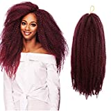 Roktress 6 Pack Marley Hair For Twist Marley Braiding Crochet Hair Long Afro Kinky Twist Crochet Braid Kanekalon Synthetic Hair Extensions (20'6pcs, TBUG#)