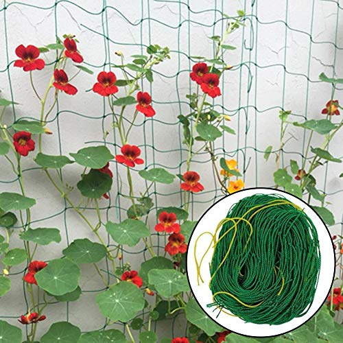 Morningtime Gartennetz Ranknetz Pflanzen Spalier Vogel Obstbaum Netz Nylon Pflanze Kletternetz Stütznetz Gartennetz für Kletterpflanzen 1,8 x 1,8 m