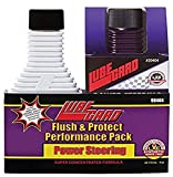 Lubegard 98404 Power Steering Flush and Protect Performance Pack, (2) 4 Ounce Bottles