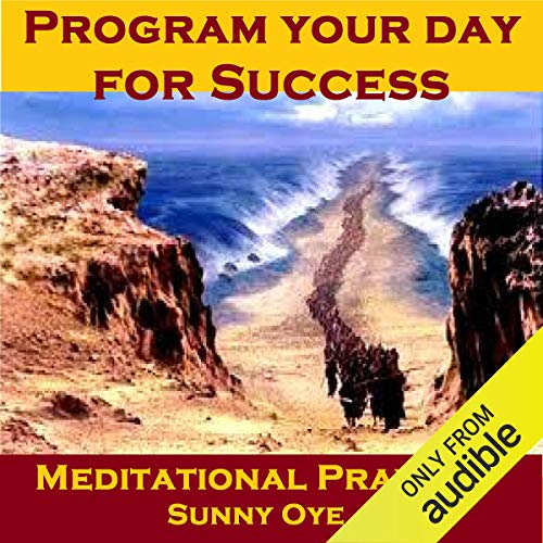Program Your Day for Success – Meditational Prayers audiobook cover art
