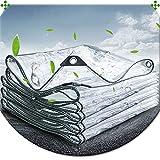 Lona Transparente, Cubierta De Lona Impermeable Con Ojales, Lona Alquitranada Antienvejecimiento Resistente Al Desgarro Toldos De Pvc, Para Exteriores, Jardín, Terraza,Transparent-1×2m/39.4×78.7in