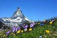 芸術品ズック製印刷ポスター、内装用品壁のデコレーションポスター(スイスマッターホルンアルプスツェルマット山)33x50cm