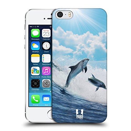 Head Case Designs Delfini Che Surfano Felici Animali Selvatici Cover Dura per Parte Posteriore Compatibile con Apple iPhone 5 / iPhone 5s / iPhone SE 2016