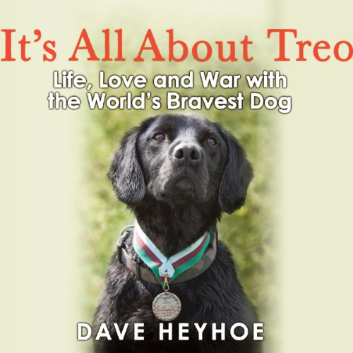 It's All About Treo audiobook cover art