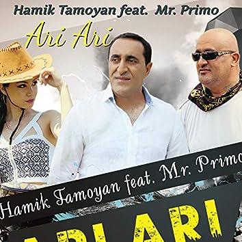Ari Ari (feat. Mr. Primo)