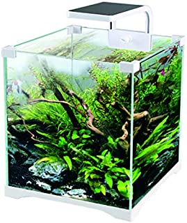 Amazon.es: acuario con filtro y led