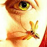Ladybird Fist