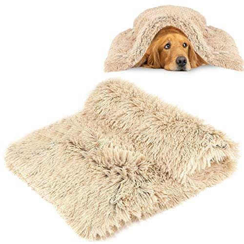 MMTX Plüsch Flauschige Decken für Hunde Doppeilseitige Super Softe Warme und Weiche Decke Haustier Hundedecke Katzendecke Liegedecke Tier Schlafdeck Überwurf für Hundebett Sofa und Couch Beige