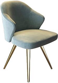 Decoración de muebles Silla de comedor 2 sillas Silla de comedor ligera Tienda de té Cafetería Taburete de acero inoxidable Minimalista moderno para comedor Sala de estar Cocina Dormitorio (Color: