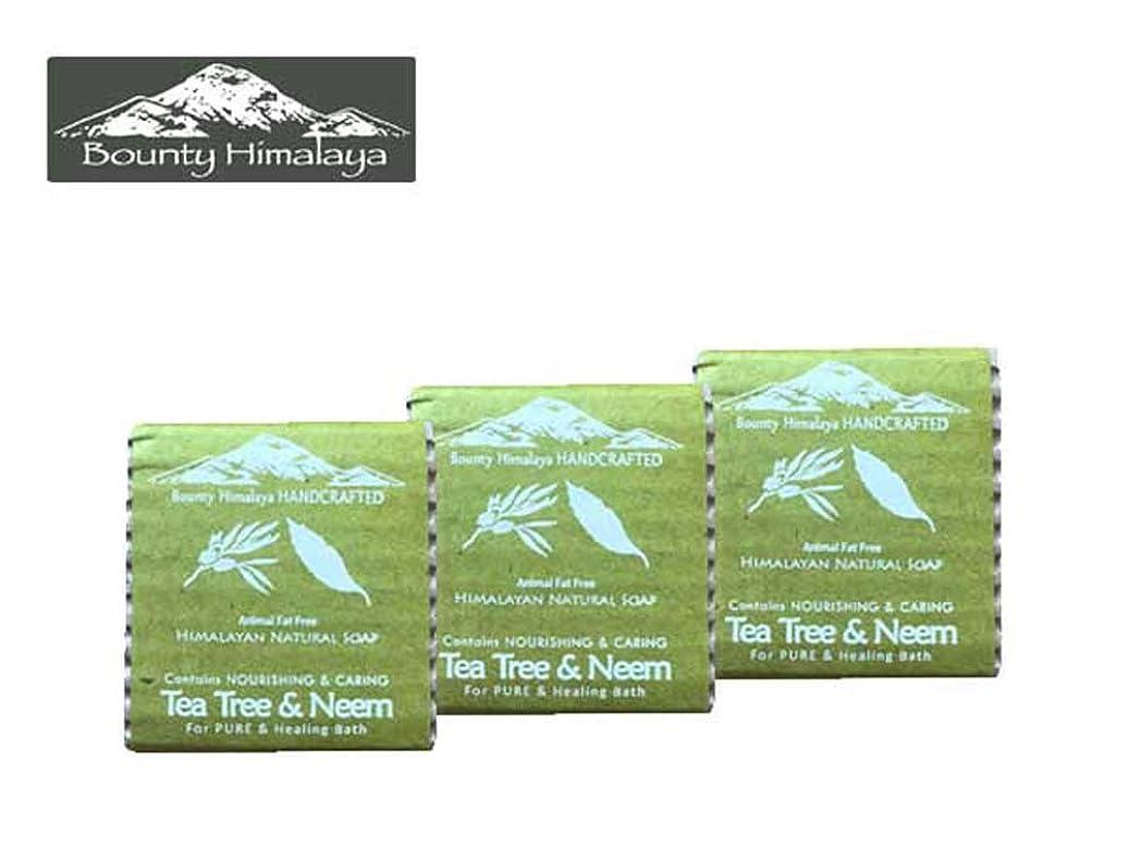 つまずくキャリッジチキンアーユルヴェーダ ヒマラヤ ティーツリー?ニーム ソープ3セット Bounty Himalaya Tea Tree & Neem SOAP(NEPAL AYURVEDA) 100g