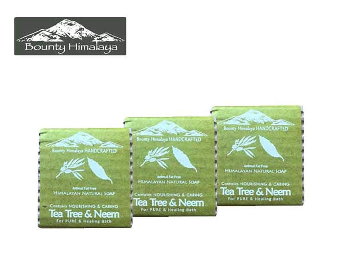 オーブンサーキュレーション腐食するアーユルヴェーダ ヒマラヤ ティーツリー?ニーム ソープ3セット Bounty Himalaya Tea Tree & Neem SOAP(NEPAL AYURVEDA) 100g