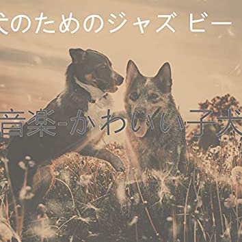 音楽-かわいい子犬