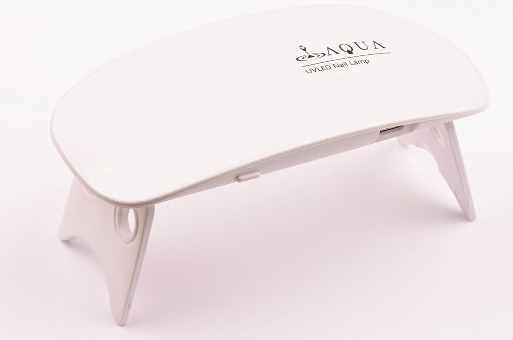 エラー付与困惑LEDライト UVライト 6W 持ち運びに便利な軽量コンパクトサイズ (04.ホワイト)