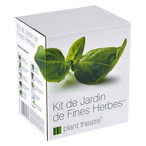 Il Kit Erbe Aromatiche di Plant Theatre - 6 diverse erbe aromatiche da coltivare –Regalo per gli amanti del giardinaggio