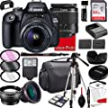 Canon EOS 2000D (Rebel T7) DSLR Camera with 18-55mm f/3.5-5.6 Zoom Lens, 64GB Memory,Case, Tripod and More (28pc Bundle) by Canon