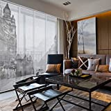 GoDear Design Deluxe Adjustable Sliding Panel Track Blind 45.8'- 86' W x 96' H, Shimmering Natural Woven Fabric, Cityscape Ink Wash Painting, Digital Art Prints, Light Filtering, Sheer, Florence