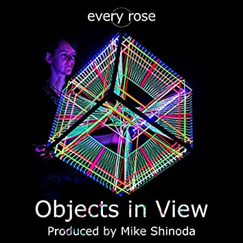 Objects in View