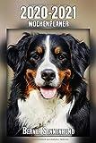2020-2021 Wochenplaner Berner Sennenhund: 221 Seiten, DIN A5 | 2-Jahre Taschenkalender | 24 Monate | Terminplaner | Tagebuch | Terminkalender | Organizer für Hundeliebhaber