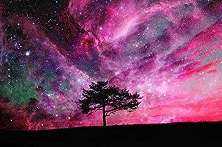 3D Starry Sky Tree 151 Wall Paper Print Decal Deco Indoor Wall Mural Self-adhesive Wallpaper AJ WALLPAPER AU Zoe (416x254c...