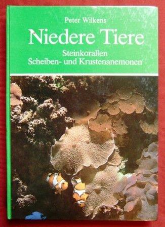 Niedere Tiere. Steinkorallen, Scheiben- und Krustenanemonen