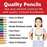 Faber Castell World Colors Ecopencils, 27 Count - Diverse Skin Tone Colored Pencils for Kids
