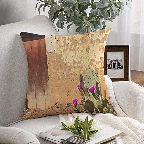 Throw Pillow Cover Door New Adobe Hodian Wall Interesante Madera Arcilla Floración Caricatura Espinosa Diseño de la Naturaleza Oaxaca Cojines Decorativos Funda para sofá Sofá Dormitorio Coche Ropa de