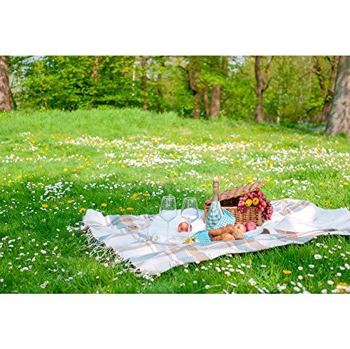 YongFoto 2,2x1,5m Vinyl Foto Hintergrund Wilde Blumen Gras Picknickdecke Korb Früchte Wein Sommer Fotografie Hintergrund Partydekoration Video Fotostudio Hintergründe Fotoshooting