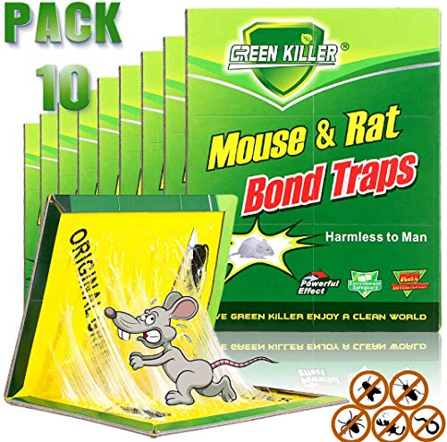 Tysonir Mouse Trap Rat Size,Rat Traps Professional Strength, Glue Traps Pesticide-Free - Glue Boards for Ant,Cockroaches, Scorpions, Spiders and Most Other Pests
