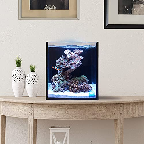 Innovative Marine Nuvo Fusion Pro 2 Series 10 Gallon Nano AIO (All in One) Aquarium - Item# 0205-P