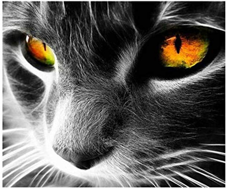 salida para la venta UPUPUPUP negro Cat DIY Pintura Al óleo por Números Kits Kits Kits Animal Arte de Parojo Imagen Decoración para el hogar Panda Pintura Acrílica sobre Lienzo para Artes, Tworidc5-50X70Cm Sin Marco  despacho de tienda