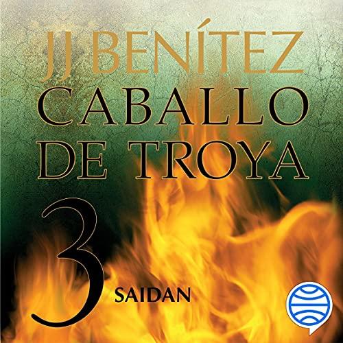 Diseño de la portada del título Saidan