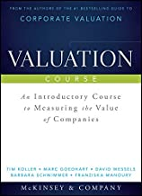 Valuation Course: An Introductory Course to Measuring the Value of Companies (Wiley Finance)