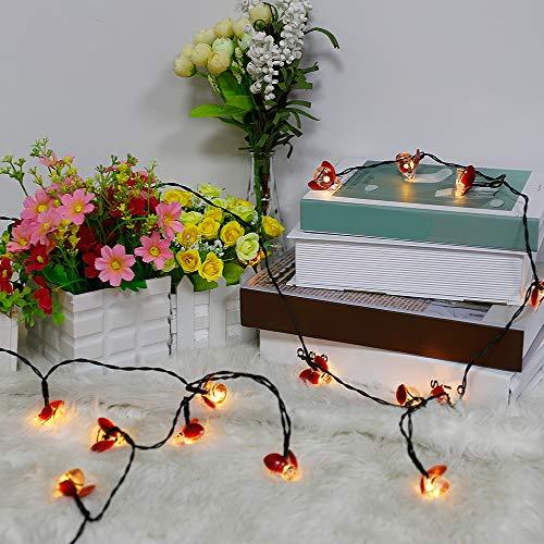 HANTURE Ladybugs Fairy String luces, 16.4 pies de largo cadena de luces de mariquita con 20 luces, Ladybug Led String Lights para el hogar, jardín, parque, decoración de patios